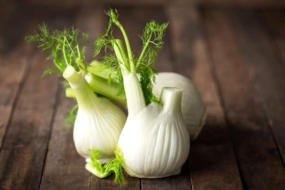 Fennel bulbs on a wooden table