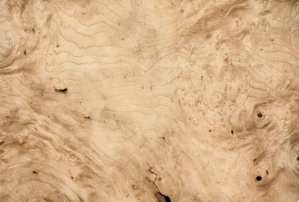 White walnut wood texture