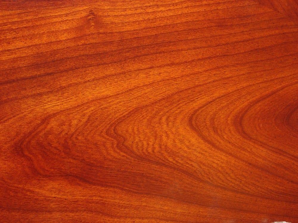 Sweet cherry wood