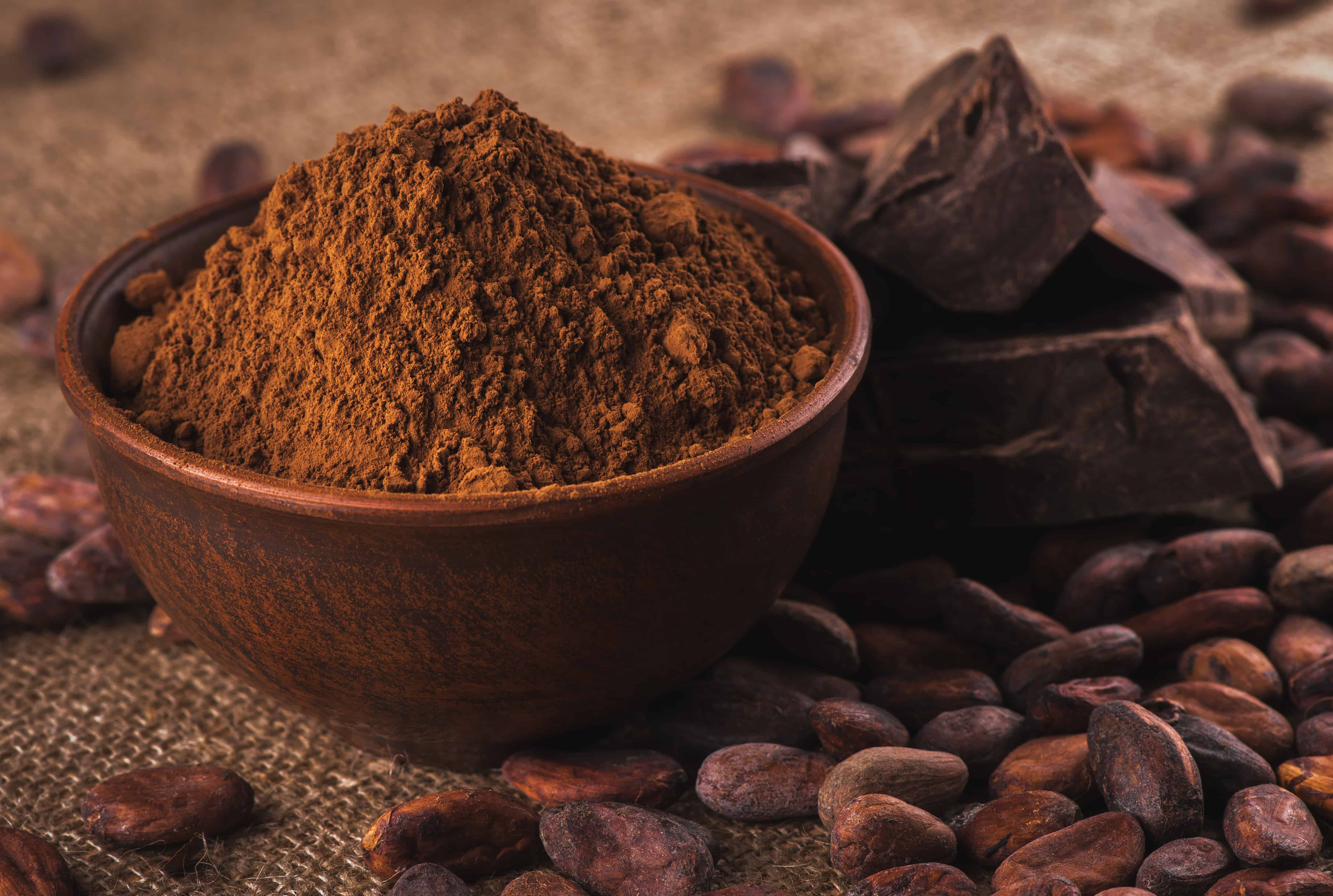 crude dark cocoa powder in a brown ceramic bowl, raw cocoa beans in the peel and raw chocolate on sacking close up, ingredients for preparing chocolate and sweets