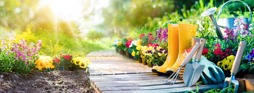 Garden with boots and gardening tools