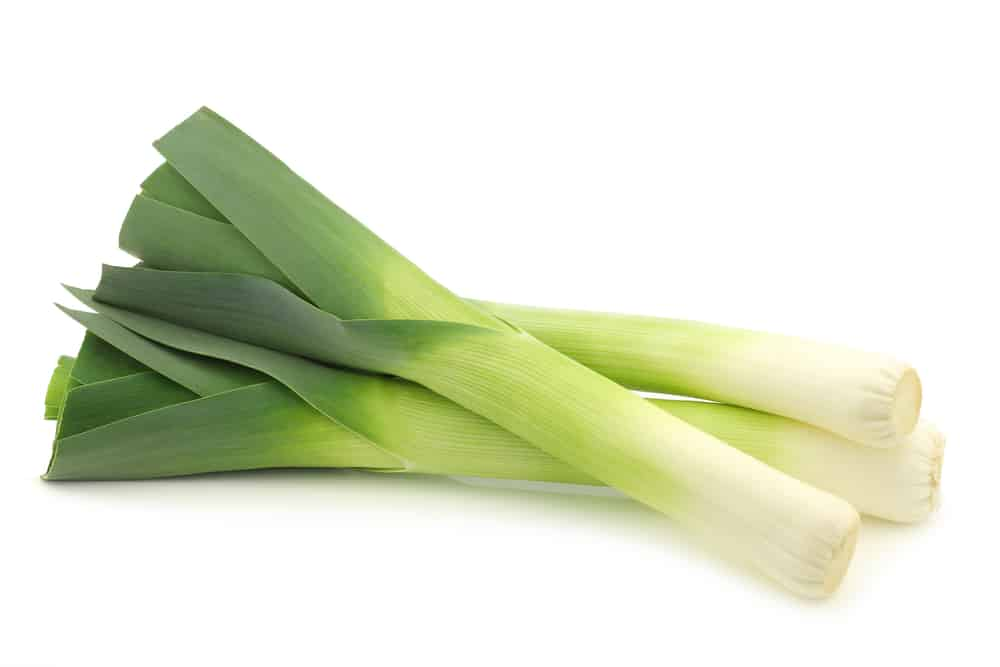 Raw organic leeks with a white background
