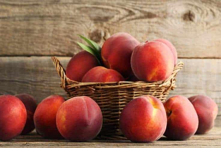 Nectarines in picnic basket