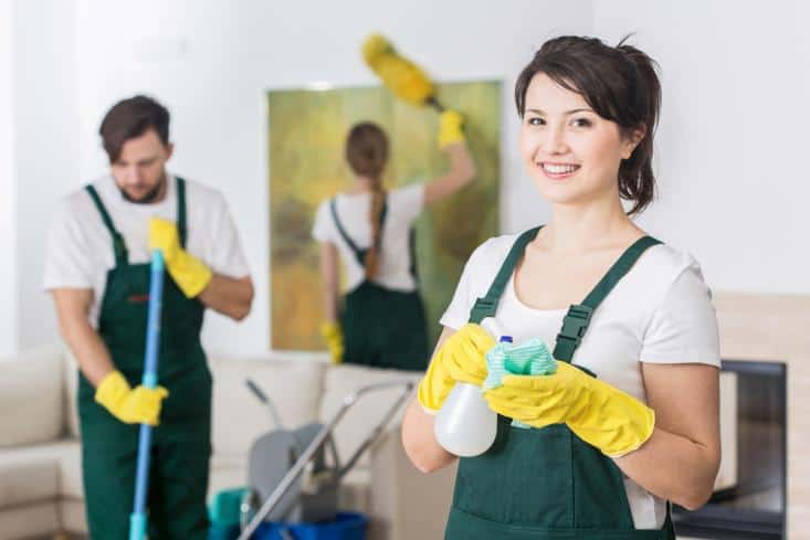House cleaner mopping floor, house cleaner wiping painting and house cleaner looking at camera and smiling