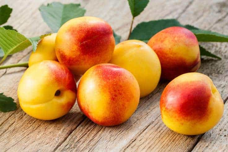 Nectarines on a table