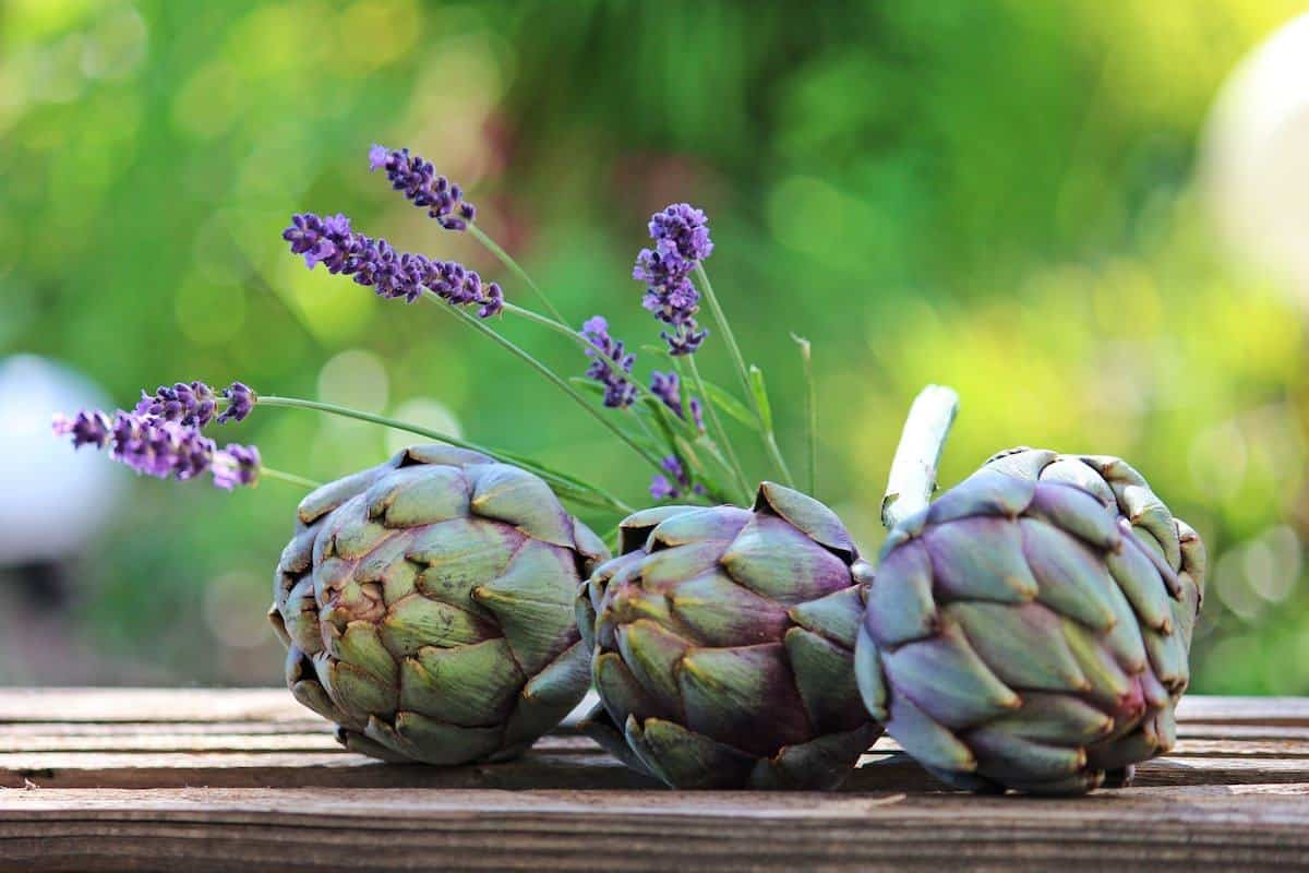 3 artichokes on a table
