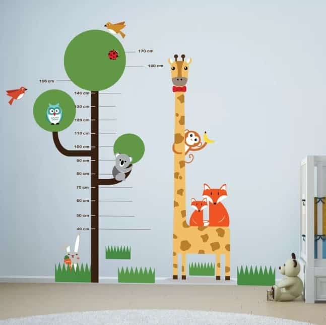 Measuring Chart Wall Decals