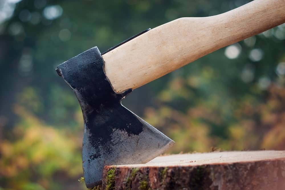 An axe resting on the edge of a stump.