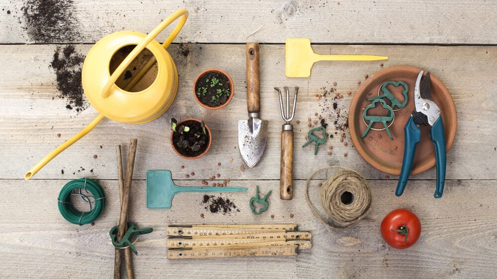 Different types of gardening tools.