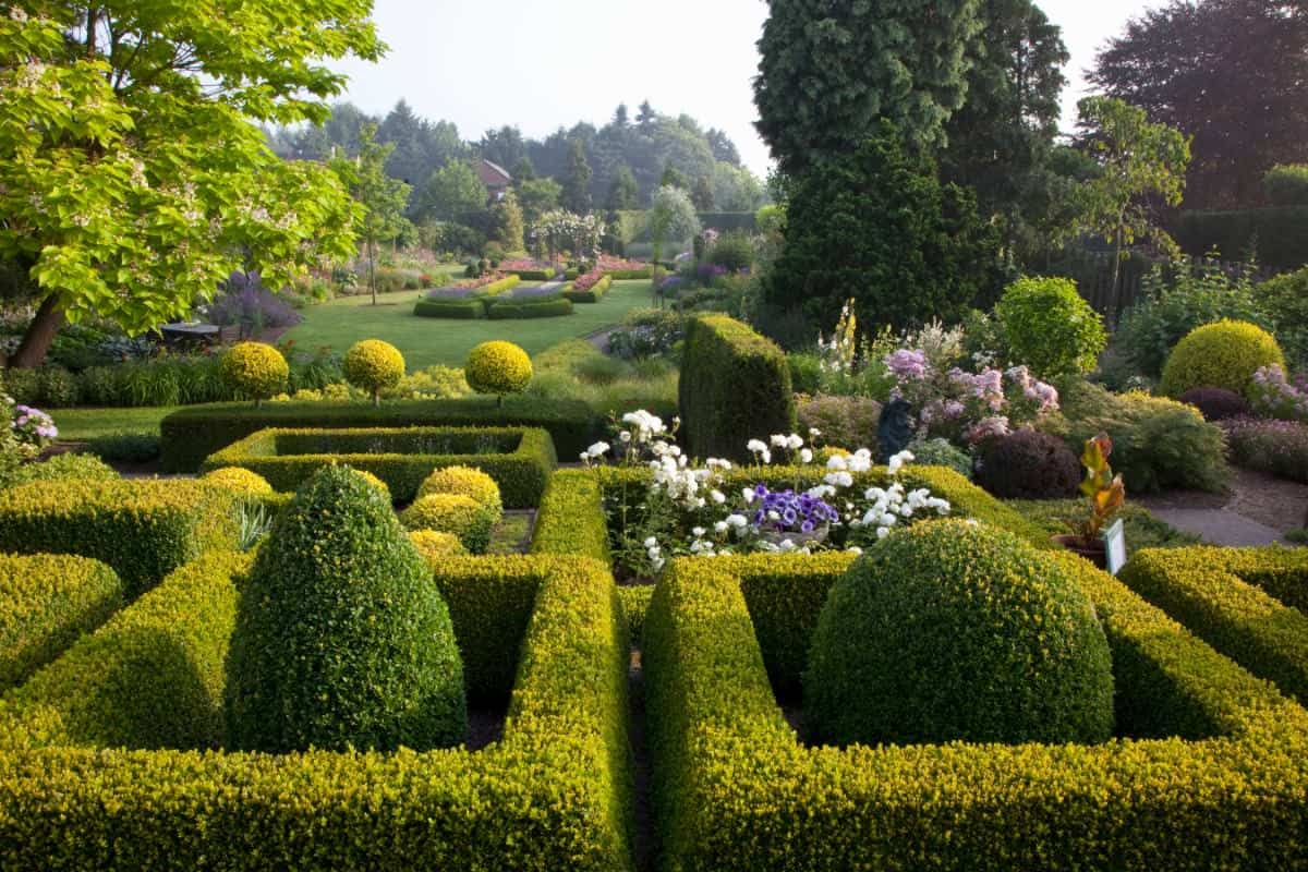 Formal knot garden in large property