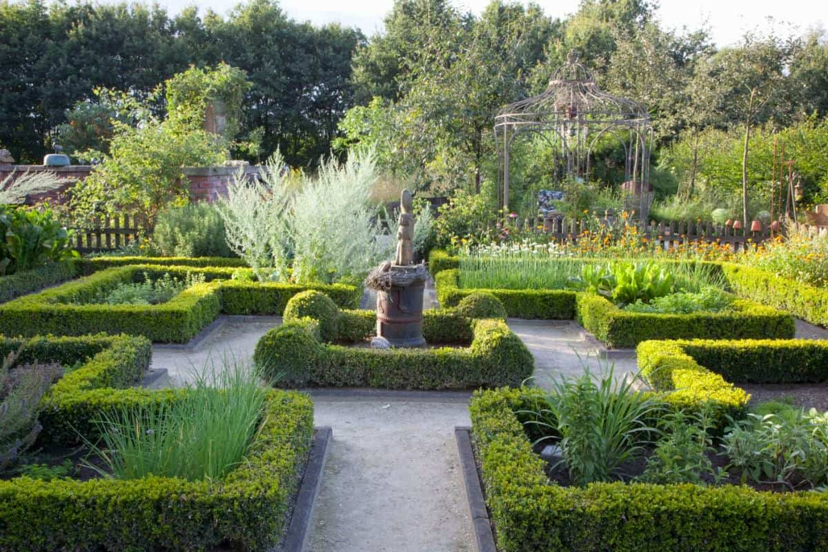 Boxwood knot garden patio with statue