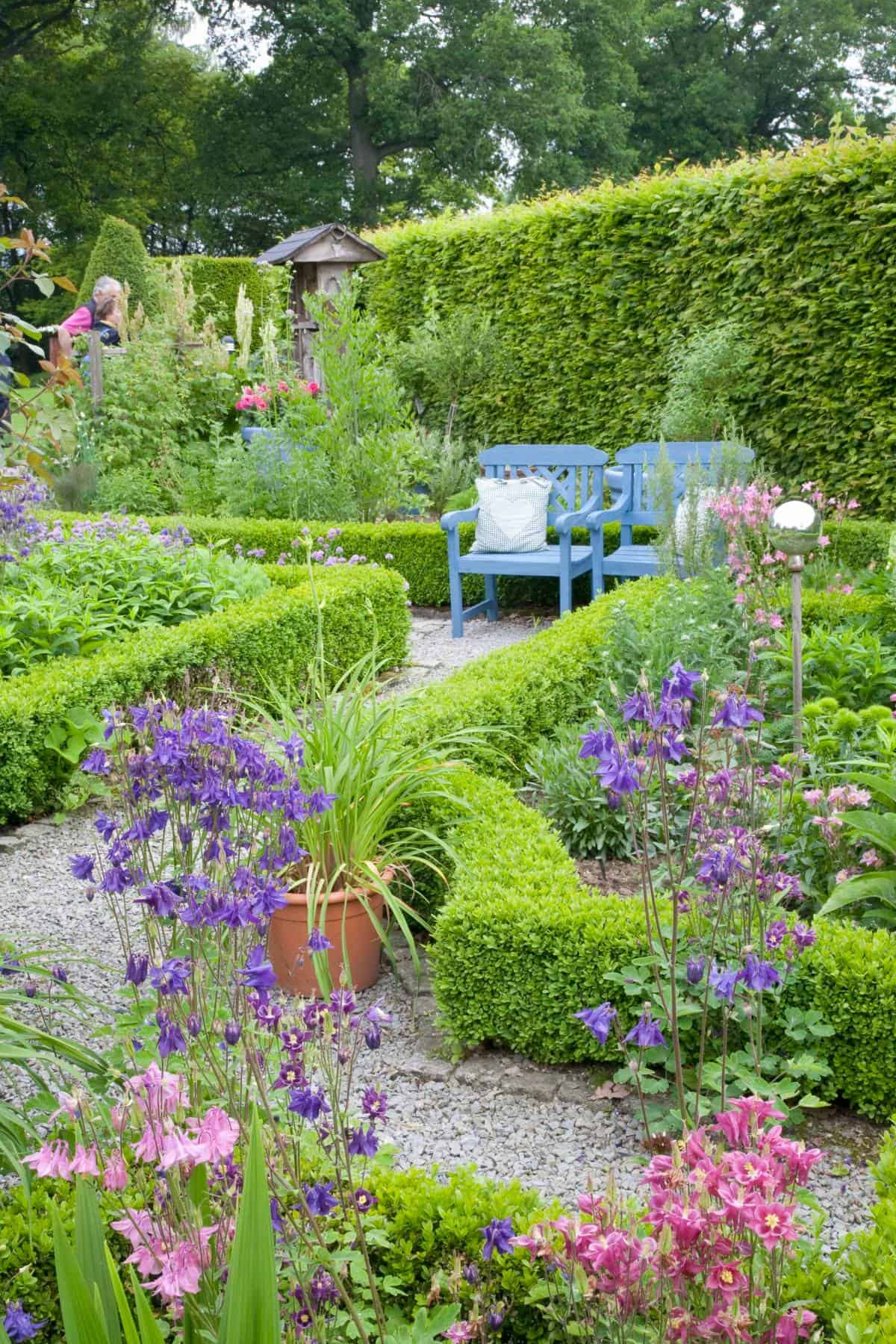 Very cool cottage knot gardens