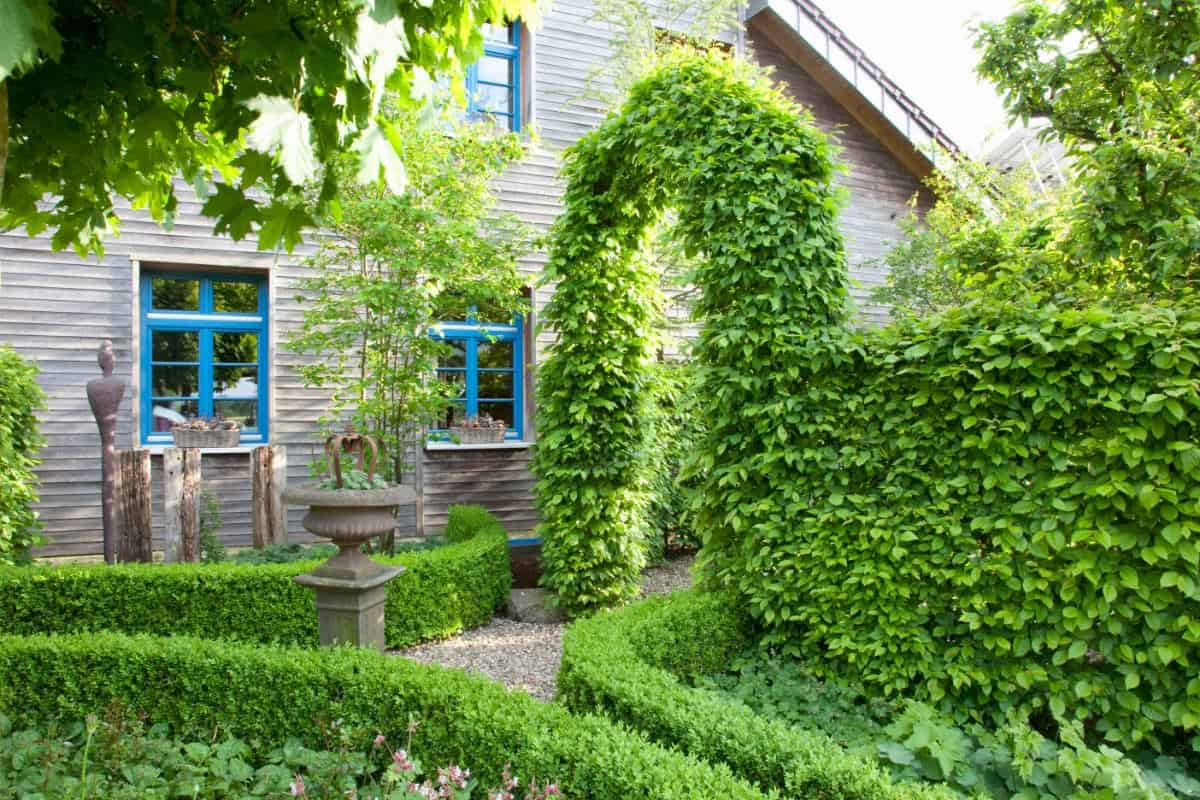 Old house with knot hedges throughout the small property