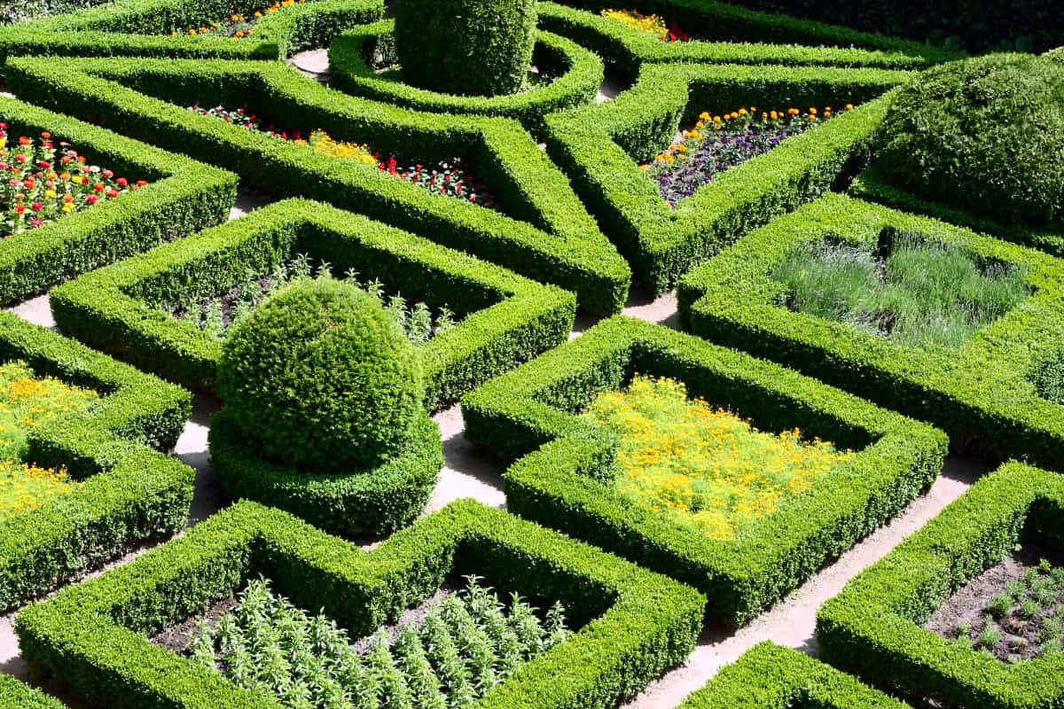Puzzle-like knot garden with fabulous geometric shapes