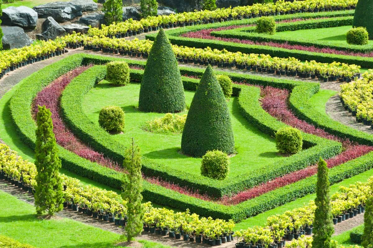 Close up of nicely manicured gardens
