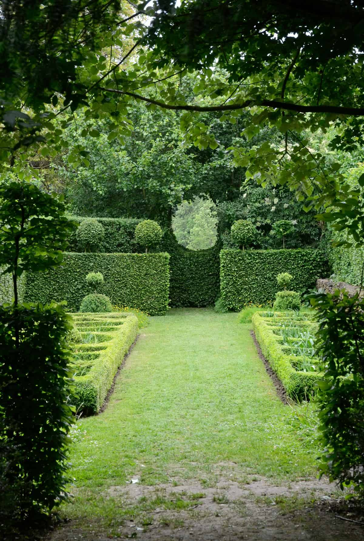 Lush knot garden