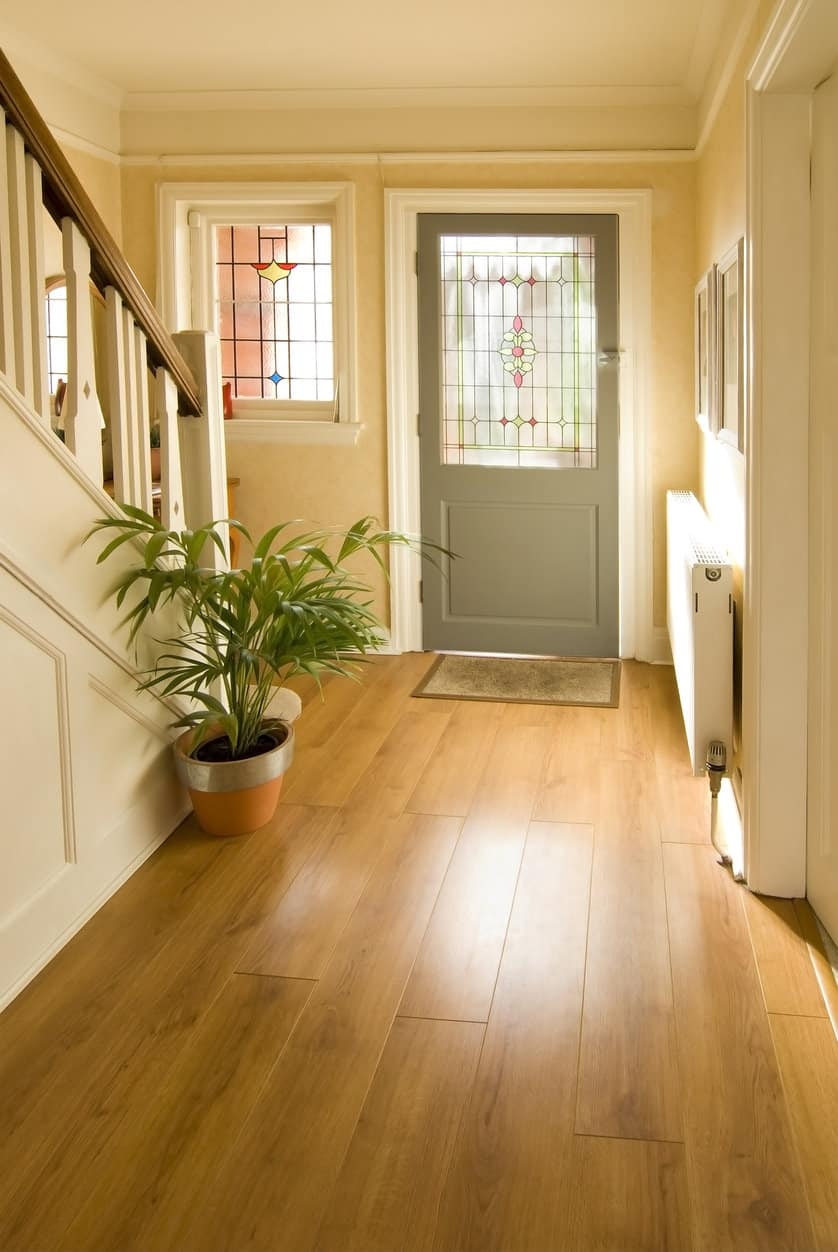 Small bright foyer featuring a hardwood flooring and a plant on the side for a refreshing look.