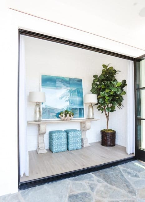 Small modish foyer featuring white walls and classy wall decors. There's a plant on the corner for additional color.