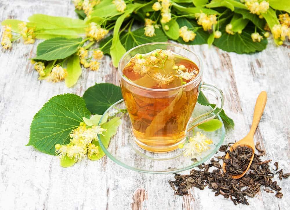 Linden herb tea