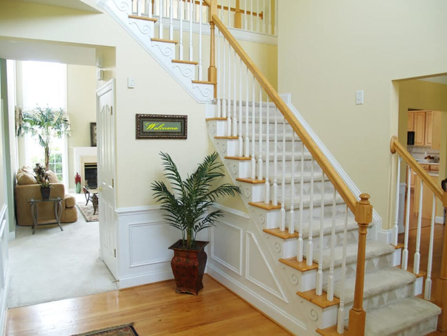 This small and charming foyer has white wainscoting to complement the light beige walls and hardwood flooring. This makes the potted plant stand out with its dark brown earthy jar at the corner beside the staircase with light-gray carpeting on its steps.