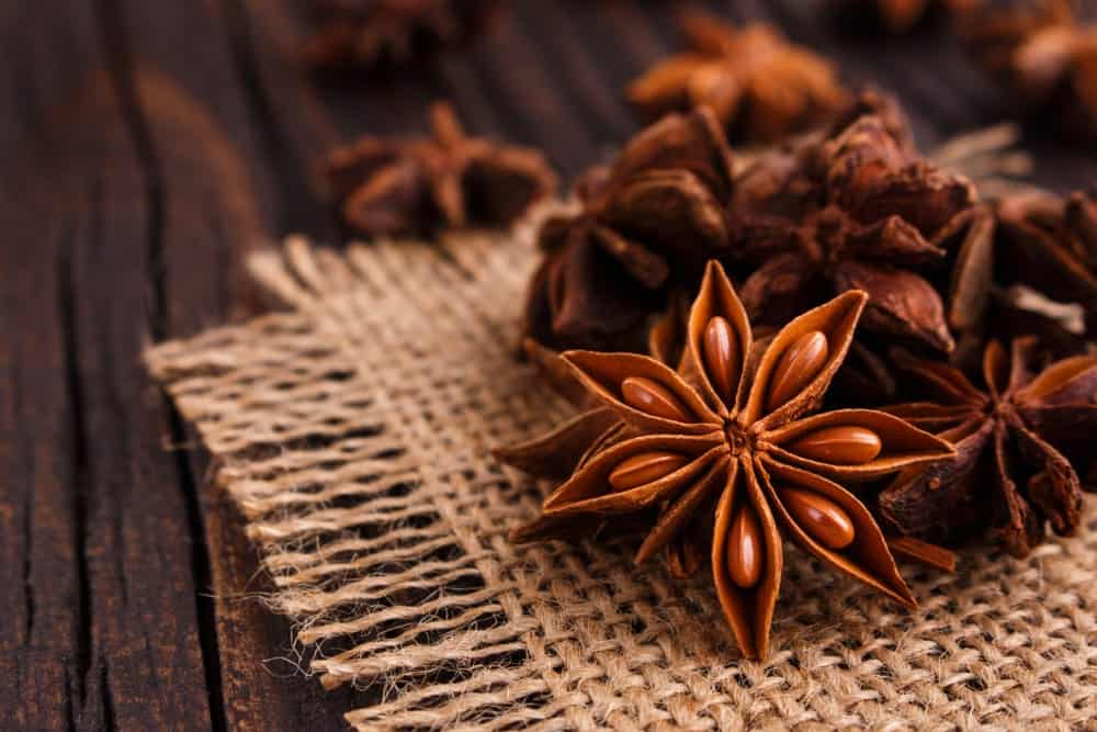 Flower Shaped Anise Spice