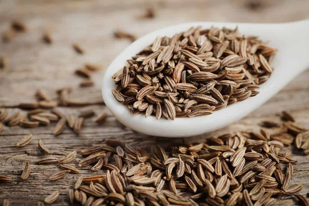 A spoon of Caraway Seeds