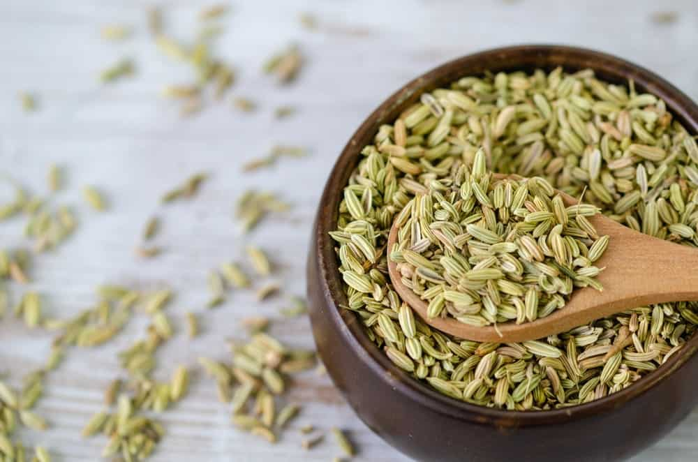 Fennel Seeds with a wooden bowl and spoon