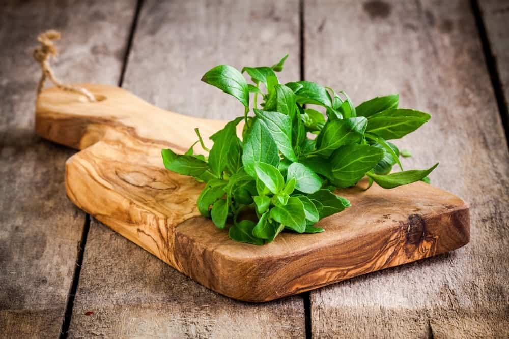 A Bunch of Basil Leaves on a Wooden Board