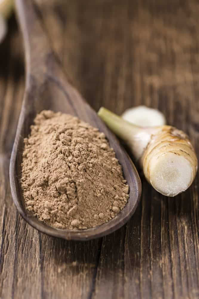 Galangal Root Powder in a Wooden Spoon