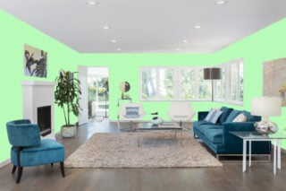 Light green living room - RGB: R184G251B184
