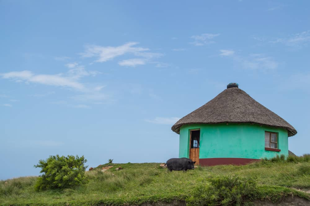 Traditional Round Houses at Coffee Bay, Eastern Cape, South Africa
