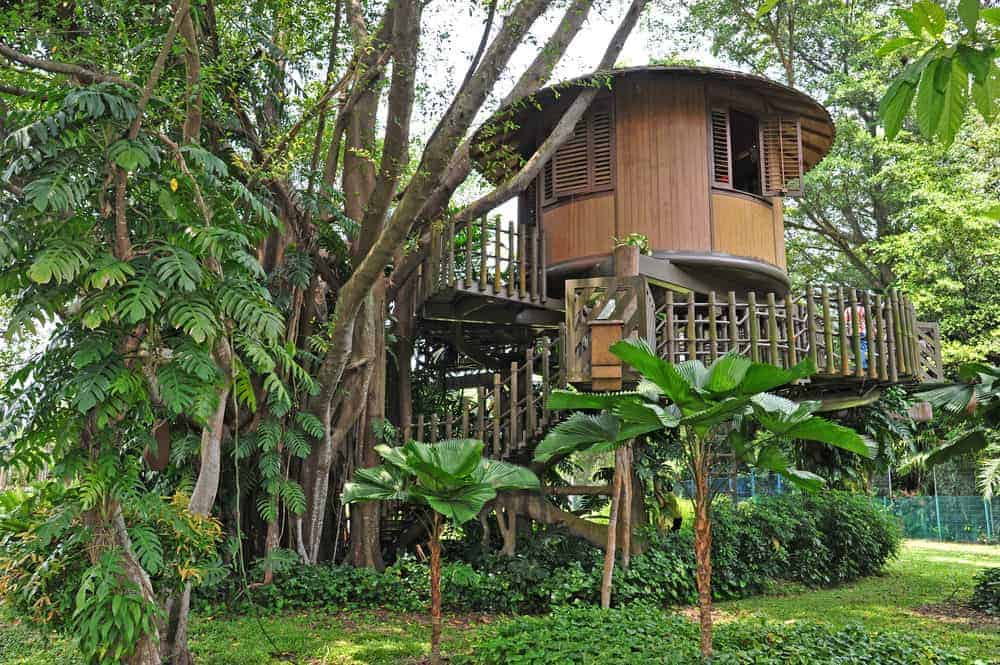 Tropical round treehouse