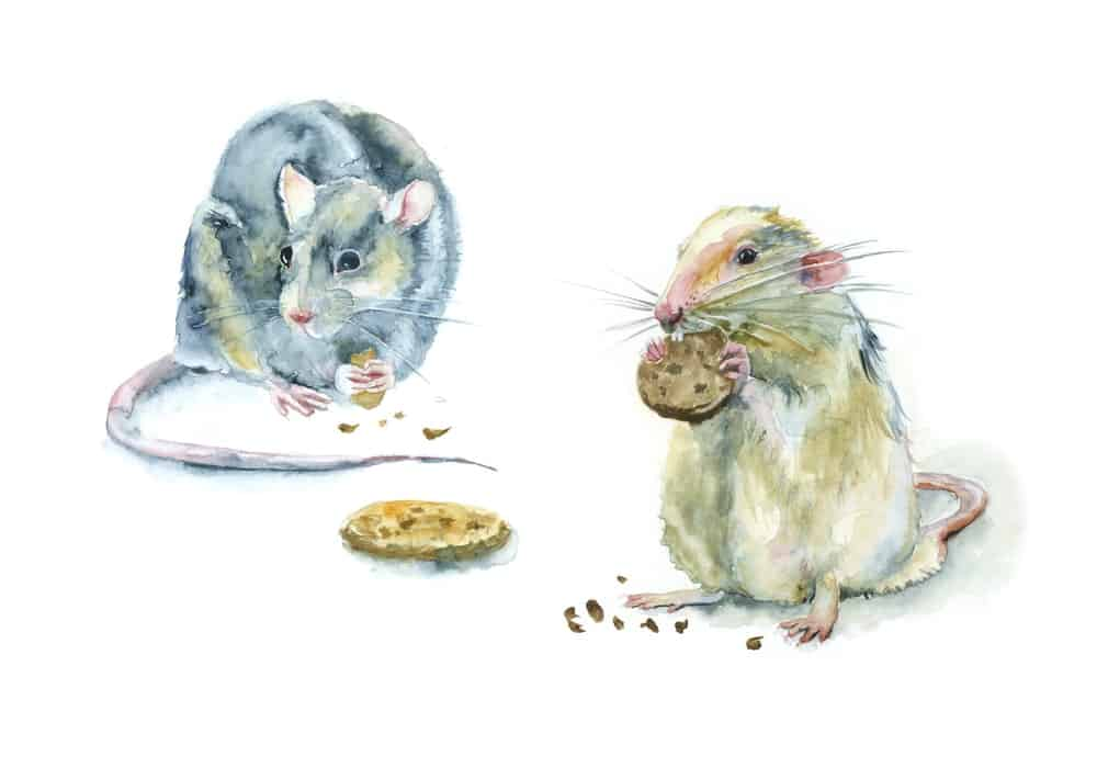 A watercolor painting depicting to mice