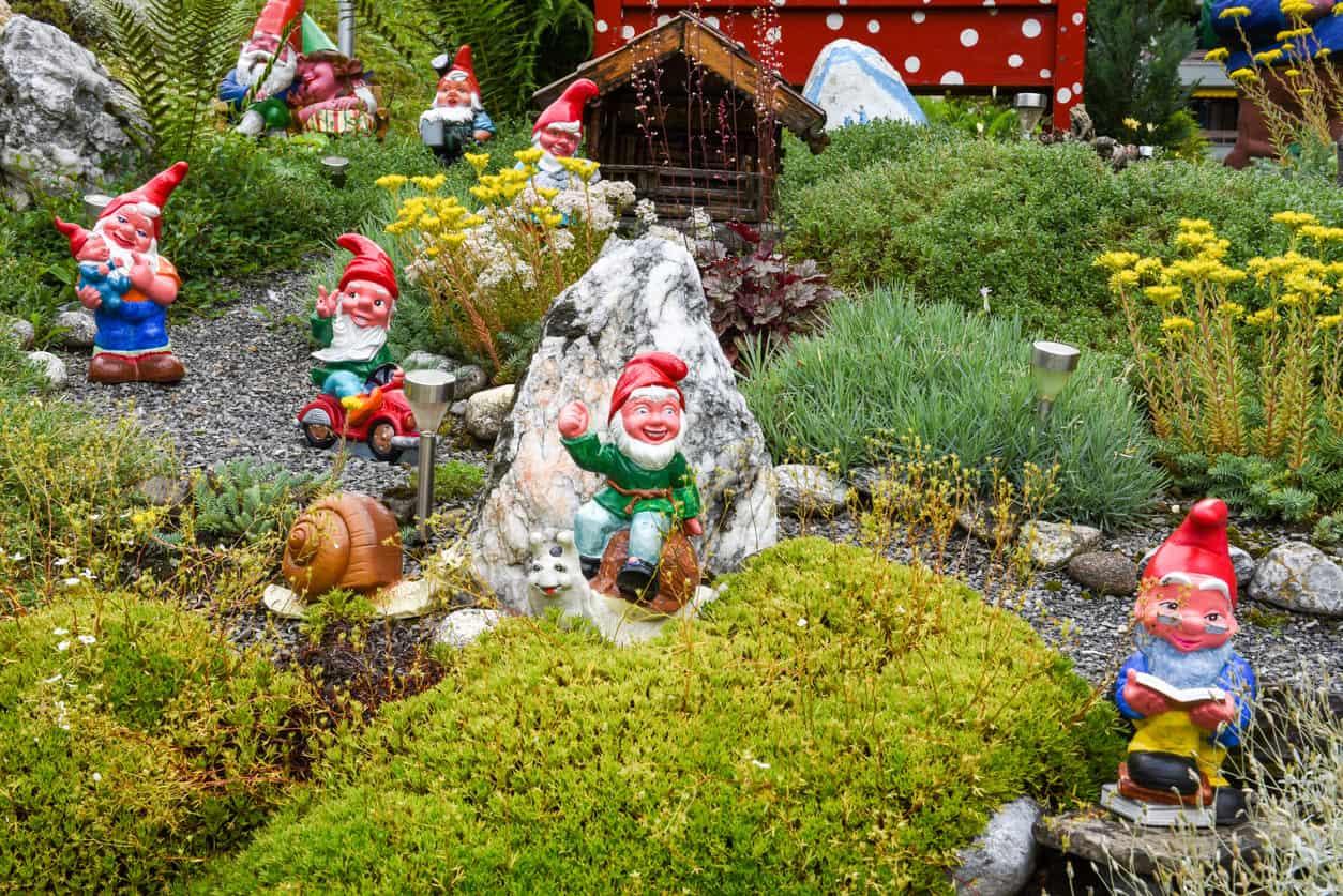 Garden gnomes decorating a garden and walkway.