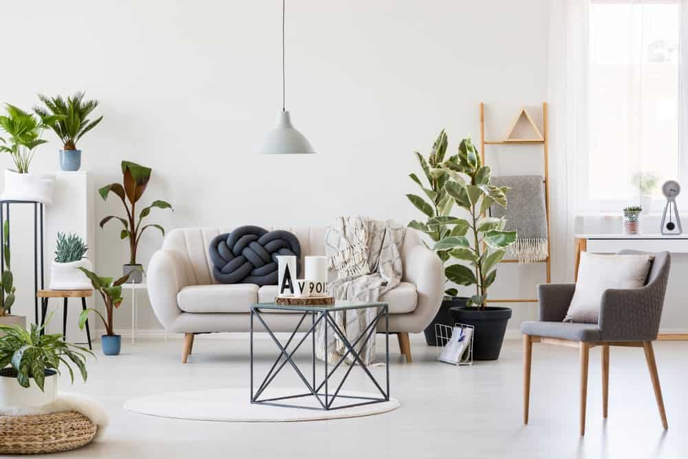 This Scandinavian-Style living room offers multiple indoor potted plants adding color to the white room.