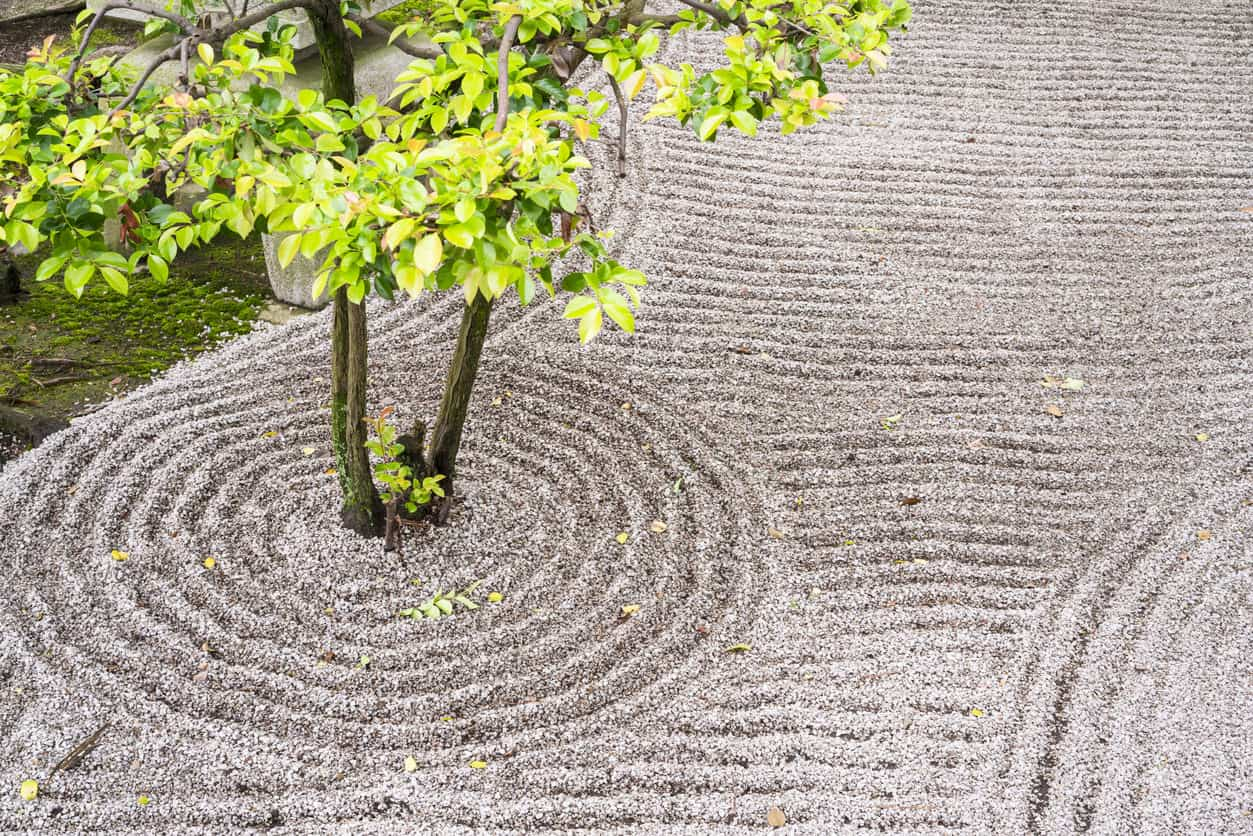 Detail from Zen garden, which is Japanese type rock garden presenting miniature landscape. It is carefully arranged meditation place with rocks, water, or water features, sand, moss, trees and bushes .
