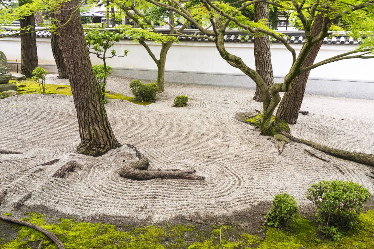 Detail from Zen garden, which is Japanese type rock garden presenting miniature landscape. It is carefully arranged meditation place with rocks, moss, trees and roots with white wll in background. That is in Chion-ji temple in Kyoto, Japan..