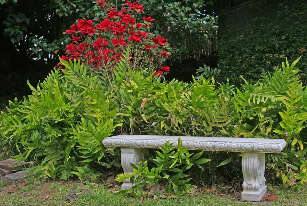 A bench made of concrete for garden