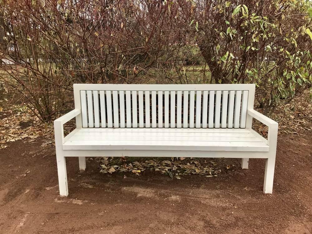 A straight-back garden bench