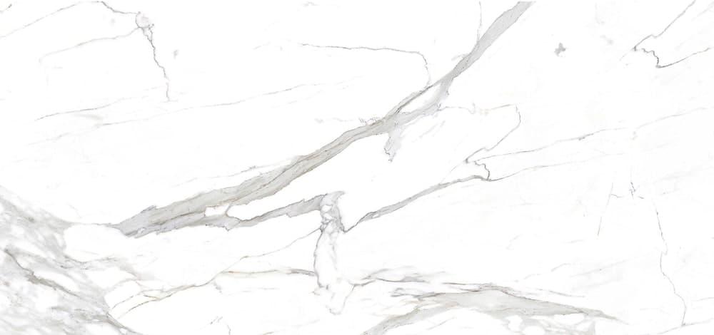 Tile of Carrara Marble