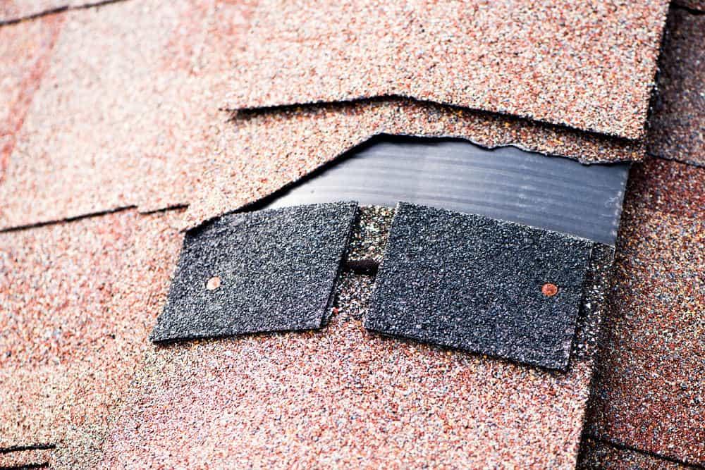 Damaged shingle on roof