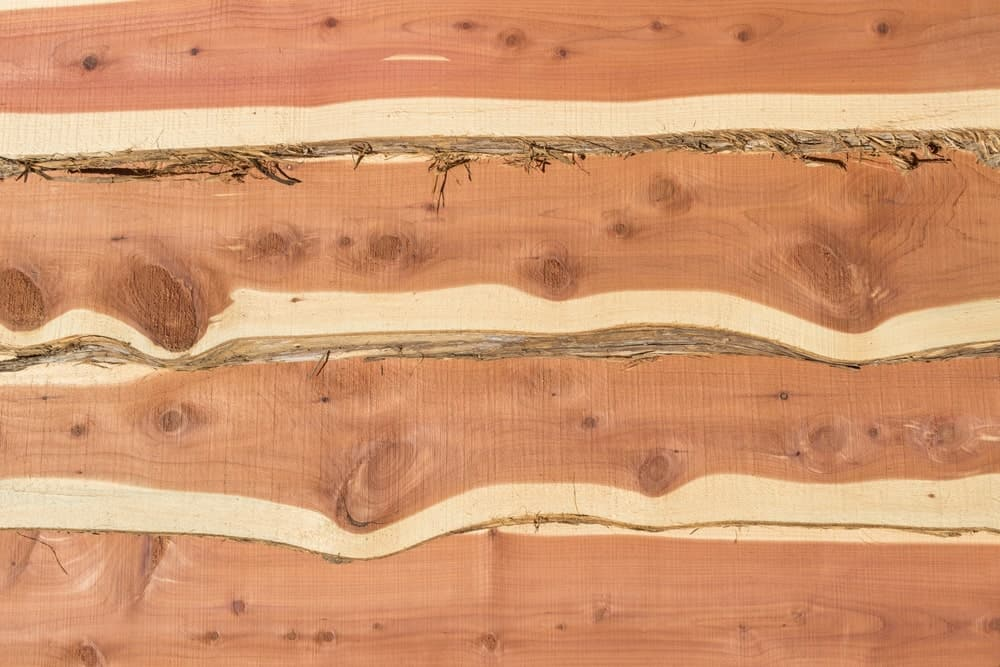 A Board of Eastern Red Cedar