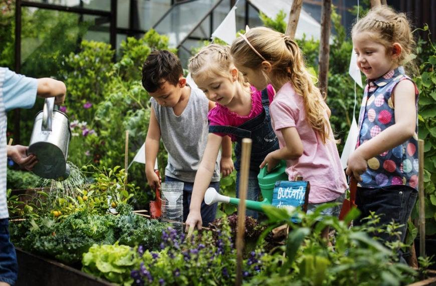 Group of kids gardening