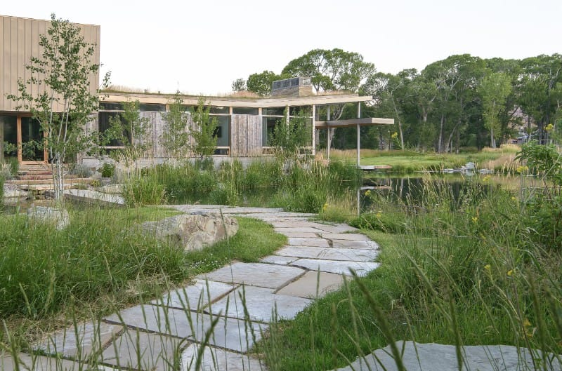 A stone pathway leading to the entrance of the house lined with tall grasses and weeds adding rustic vibes and feels.