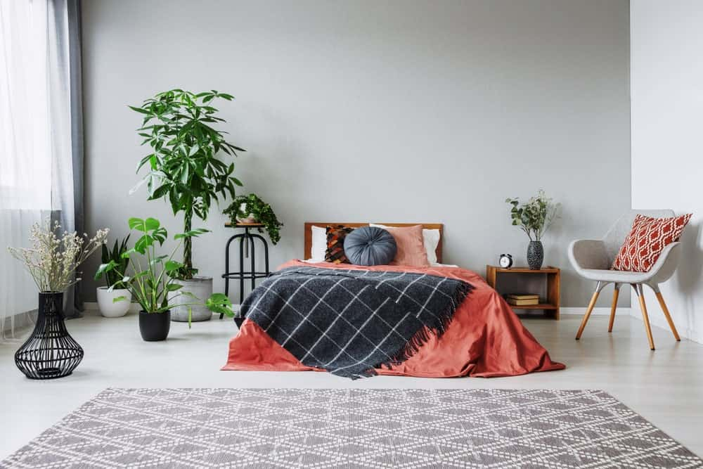 This primary bedroom offers gray walls and gray floors along with multiple indoor plants adding color to the room.