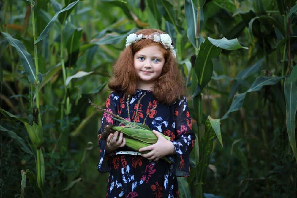 Young girl harvesting corn