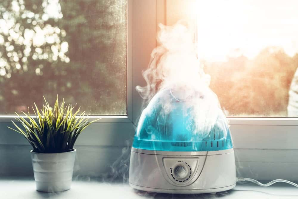 Humidifier used indoors beside an indoor plant by the window.