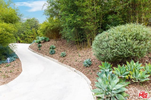 The sloped concrete path winds in the middle of a huge private garden bordered with plenty of shrubs and tall trees.