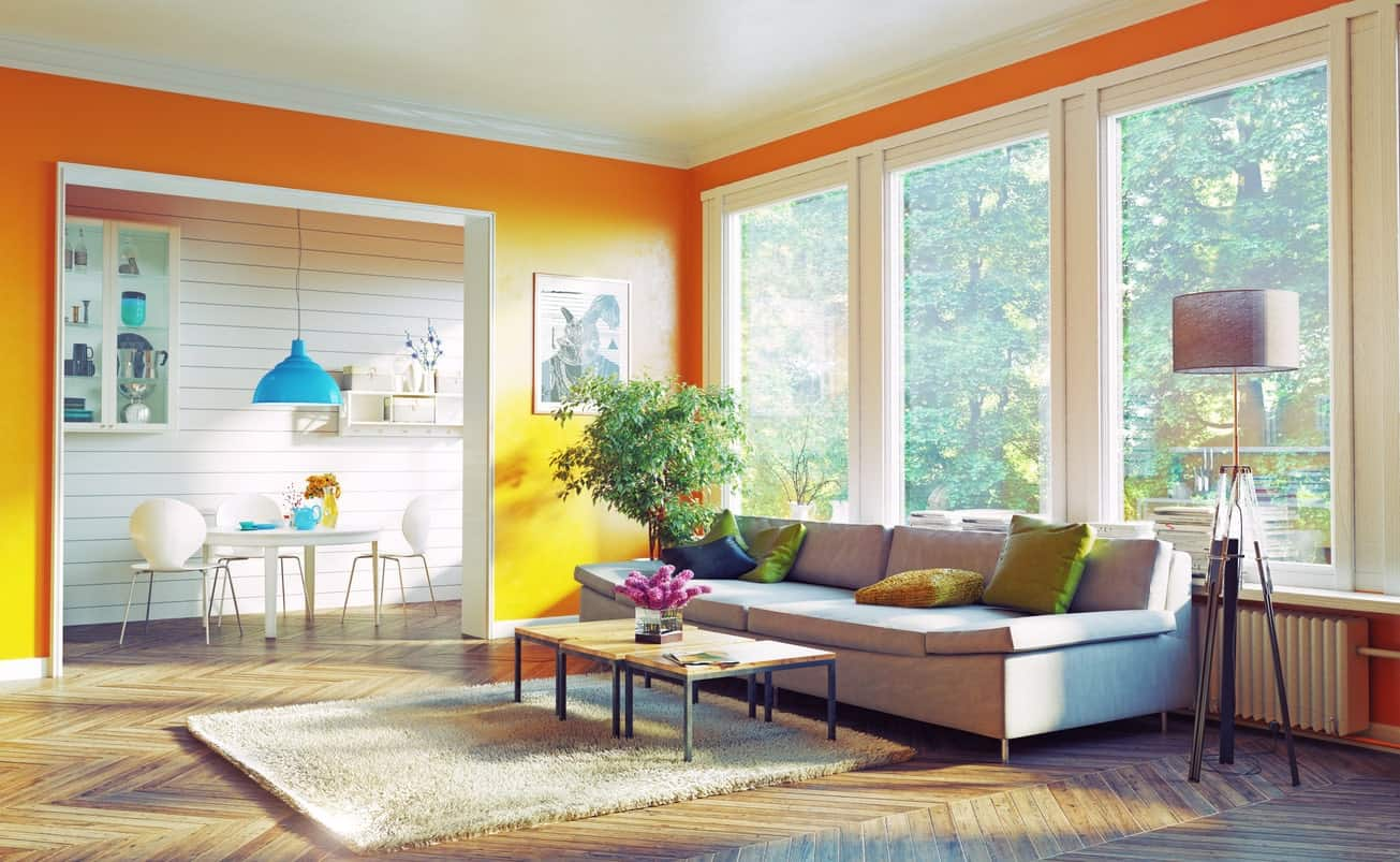 Simple and stylish orange living room with hardwood floors, large windows, floor lamp, gray sofa, and a fluffy beige rug.