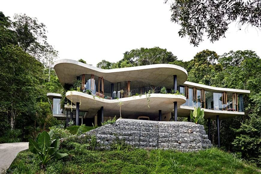 A stylish, modern house filled with towering trees and green plants. It has a concrete walkway leading to the entrance of the glazed house.